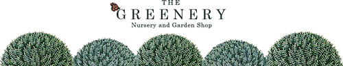 The Greenery Nursery