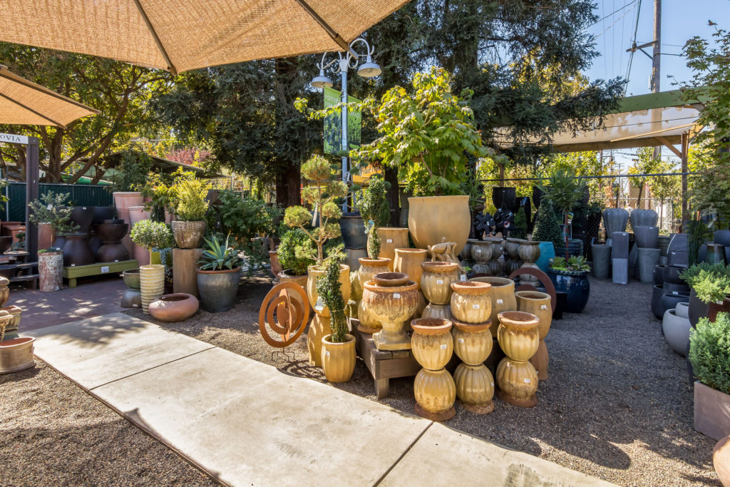 The_Greenery_Nursery_and_Garden_Shop_22